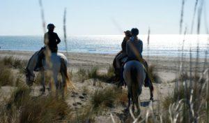 balade-cheval-camargues-681x400